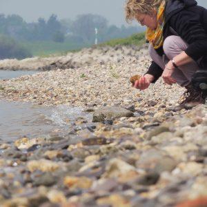 Stenen zoeken