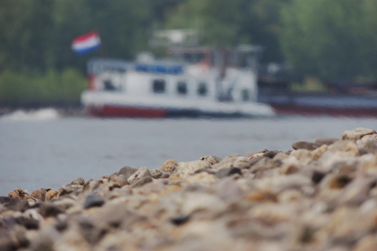 Stenen zoeken langs de Rijn